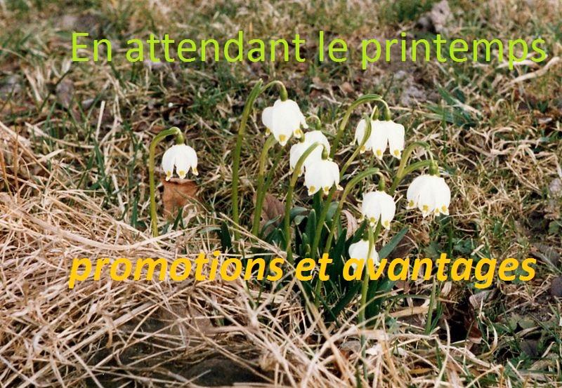 LE PRINTEMPS ARRIVE BIENTOT